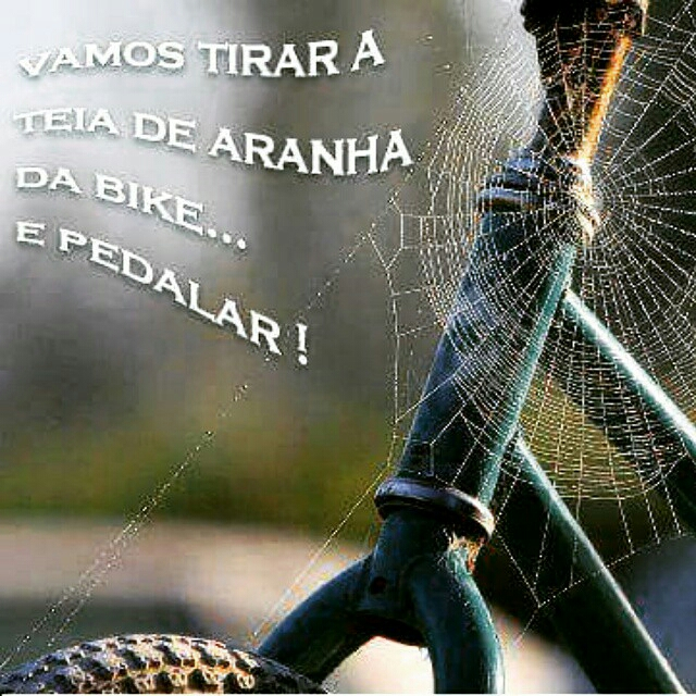Vamos tirar a teia de aranha da Bike... E Pedalar !
