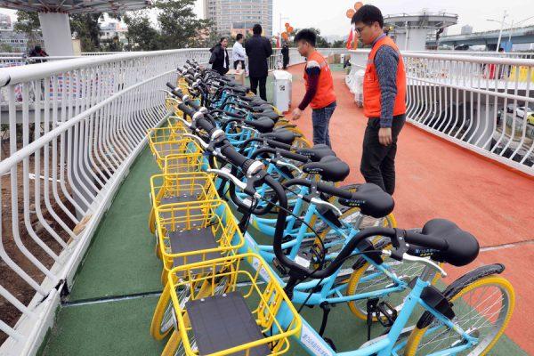 o sistema dispõe de 355 bikes para alugar